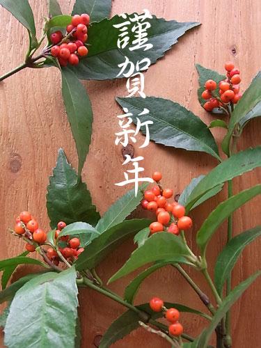 新年のご挨拶2018年/ストレッチパンツ専門店【ROOSAルーサ】